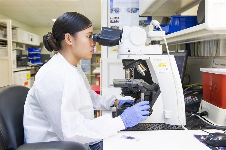 Master Scholarships in Biomedical Engineering