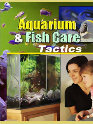 Aquarium & Fish Care Tactics